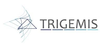 Bild zum Consulting & Investment Trigemis GmbH